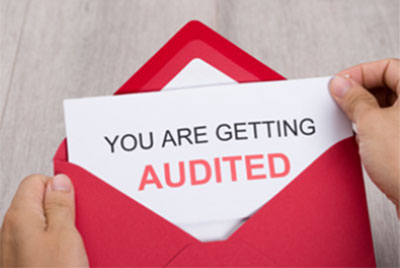 The Tax Auditor's Search for Unreported Income