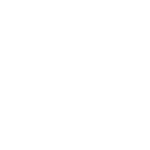 Icon_Lightbulb_WHT-01
